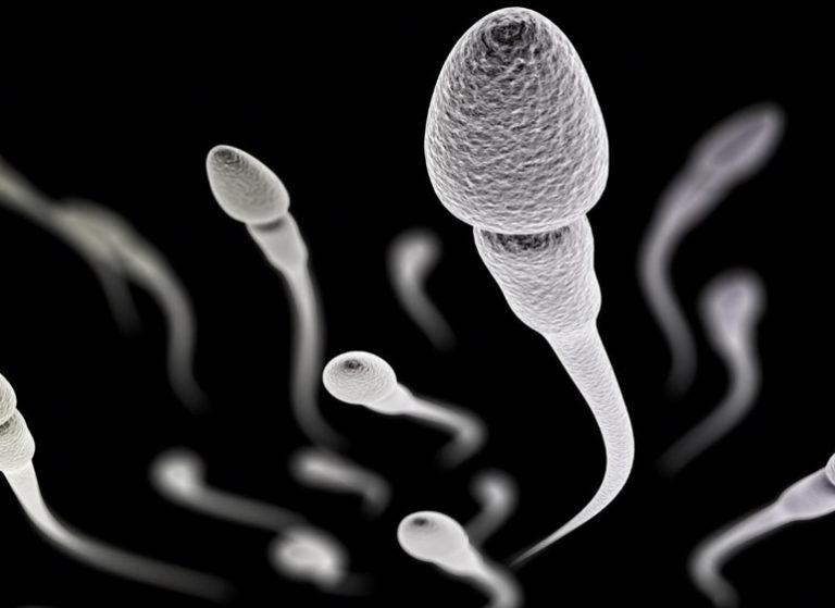 сперма капает с члена
